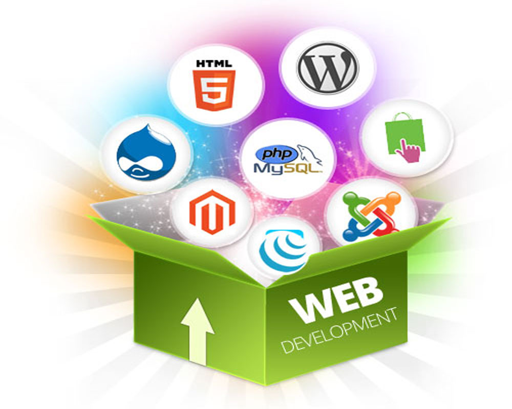 Website Designing Company in Noida Sector 50